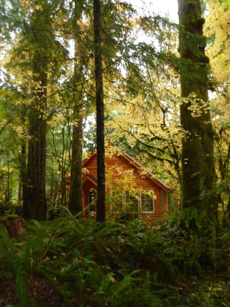 image of one of the best secluded rentals in Ashford, for luxury camping near Seattle