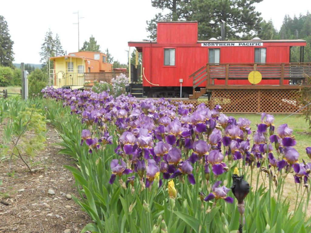 caboose rentals near Seattle and the Cascades in Washington