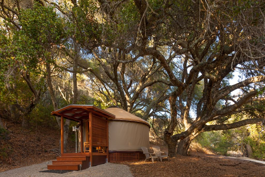 cozy forest camping cabins in the U.S. and the perfect places to spend Thanksgiving Weekend