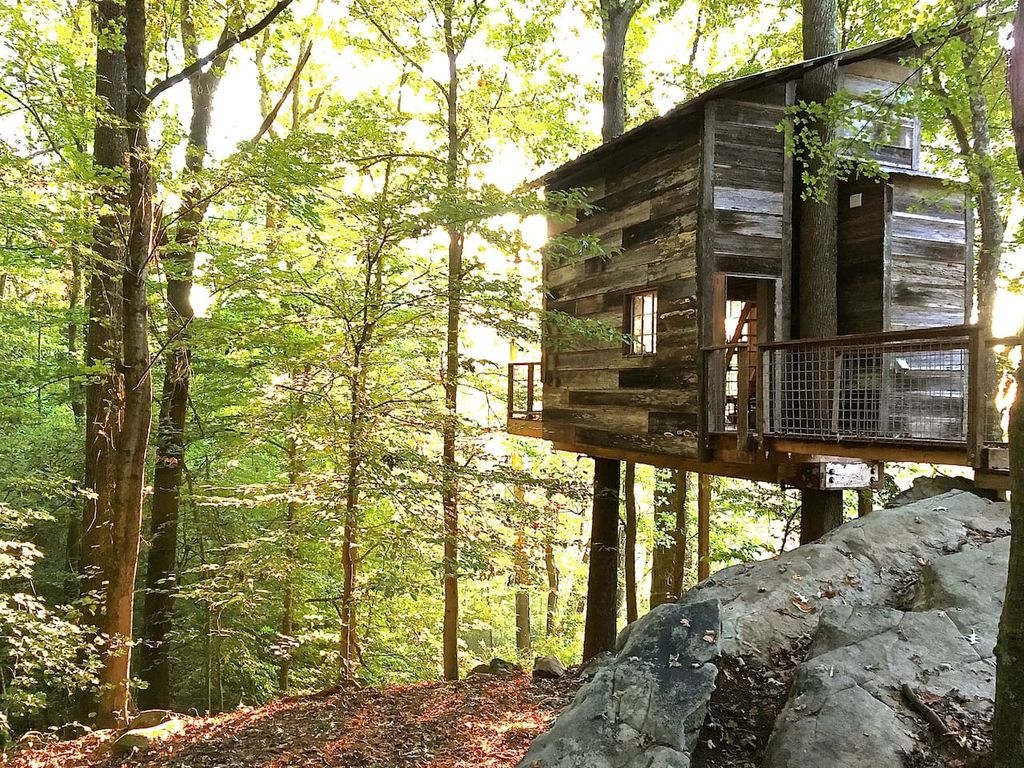 Our Top 5 Tree Houses in the U.S.