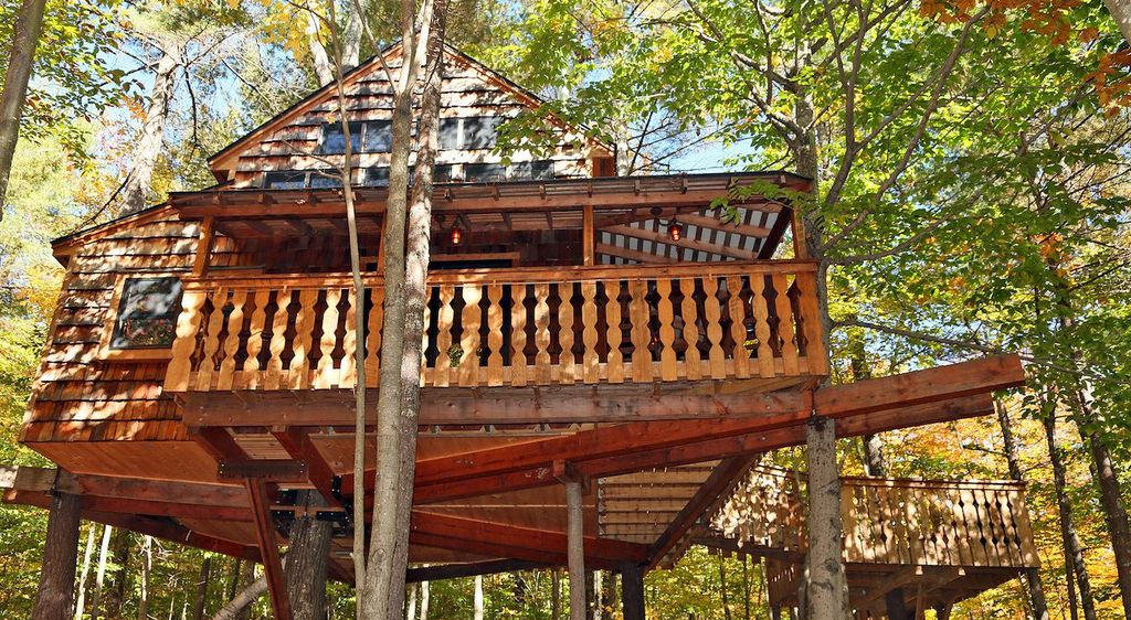 A view from the below the tree house in New Hampshire.