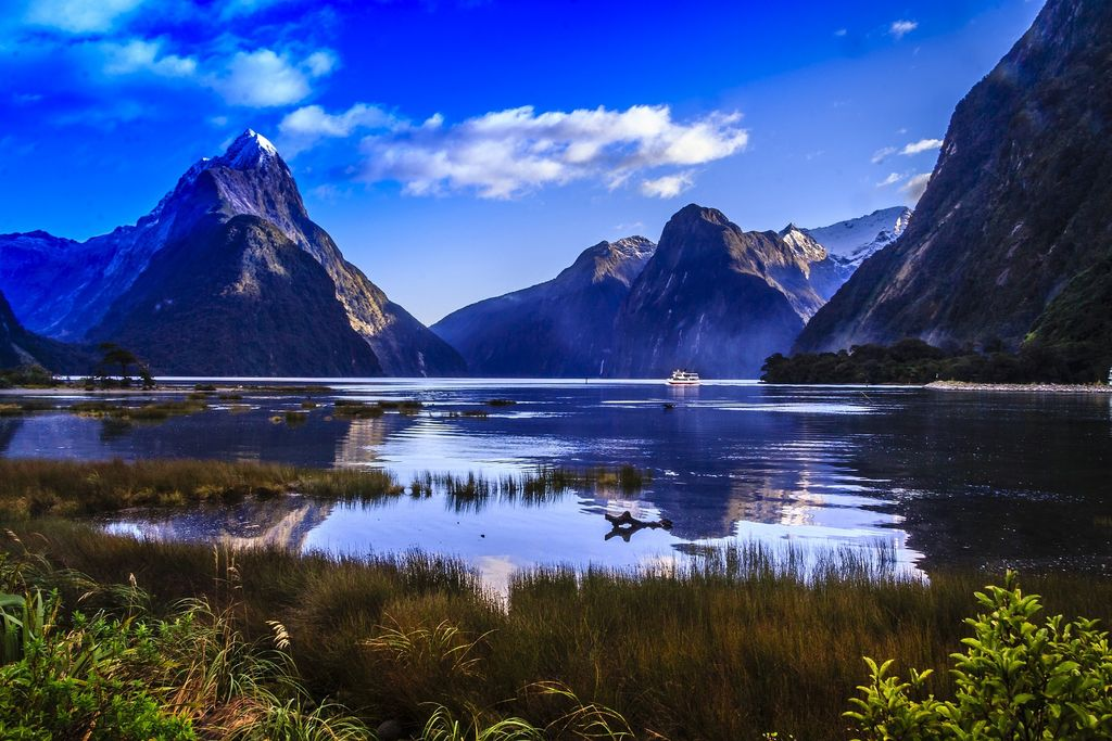Travel Guide: Pro Tips for Traveling Kiwi-Style