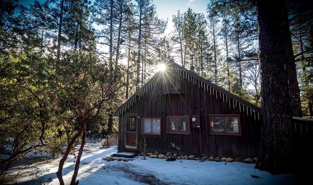No-Back-Home--Cozy-Cottage-Idyllwild