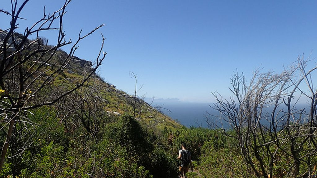 view from Kalk Bay Mountains - one of the best places to go hiking in Cape Town