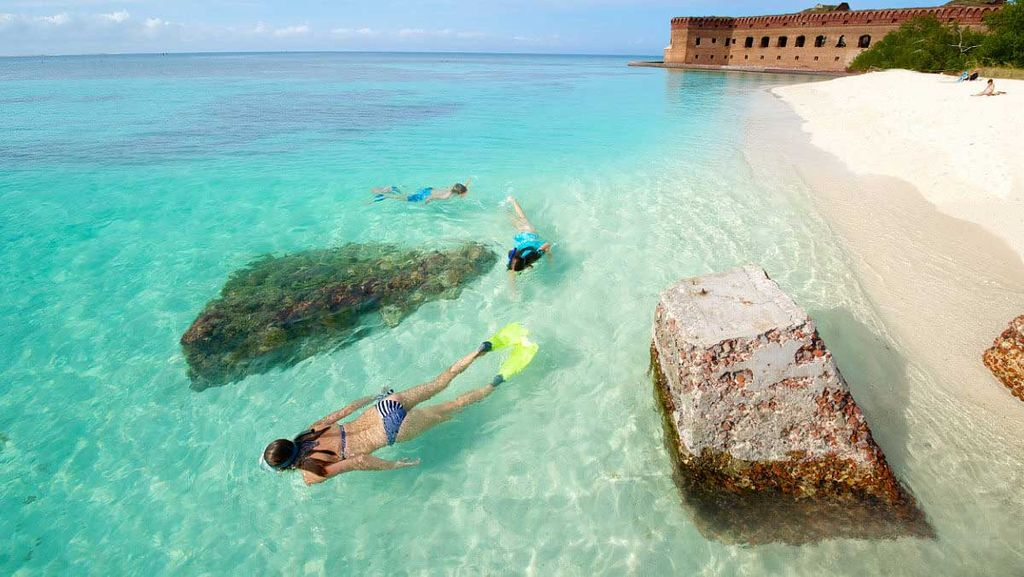 This is a photo of snorekling in Dry Tortugas National Park