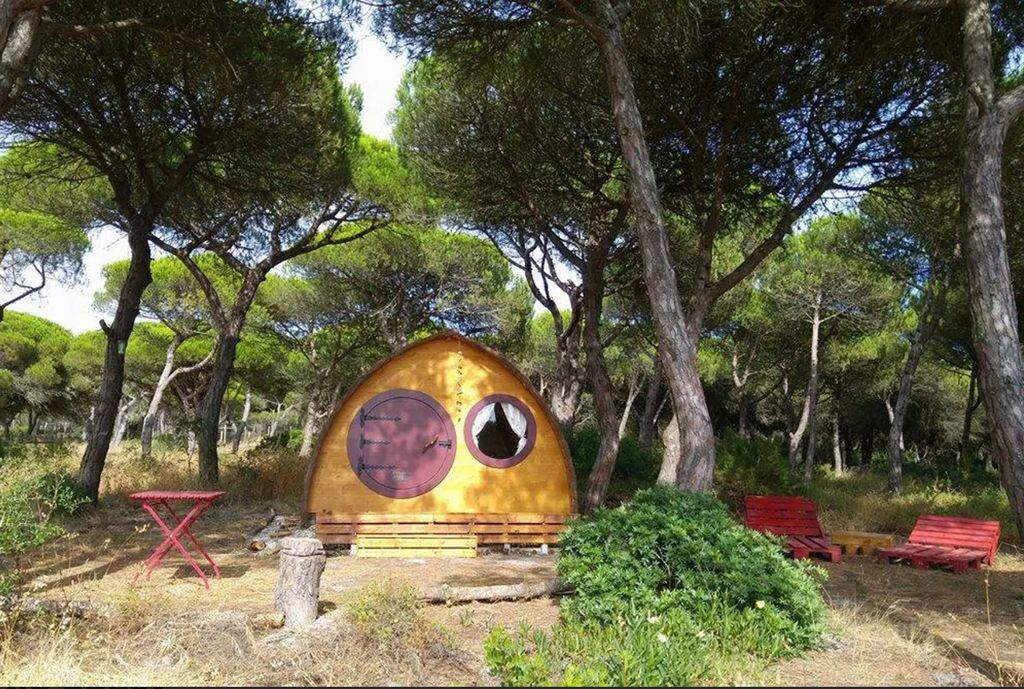 Glamping pod accommodation surrounded by trees in Portugal.