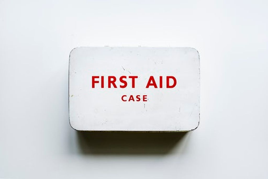 a first aid kit and one of the essential items for camping with dogs