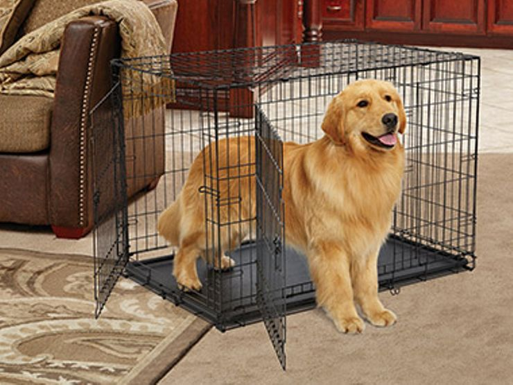 A dog cage