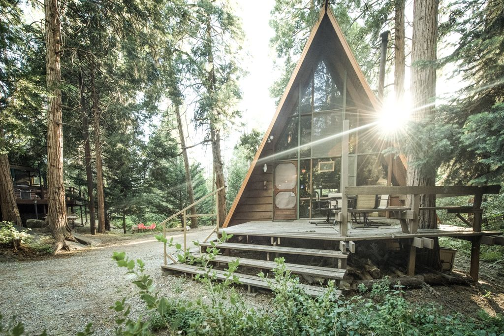 An Idyllwild cabin rental in the woods of Southern California.