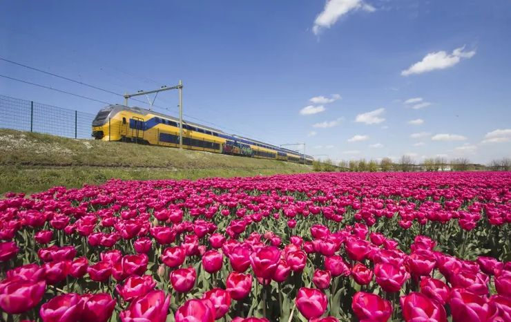 high speed train and one of the best ways to start your journeys in Holland