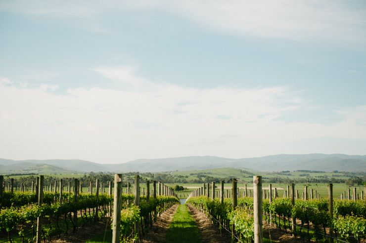 Stones of the Yarra Valley: best wineries near Melbourne for 2020